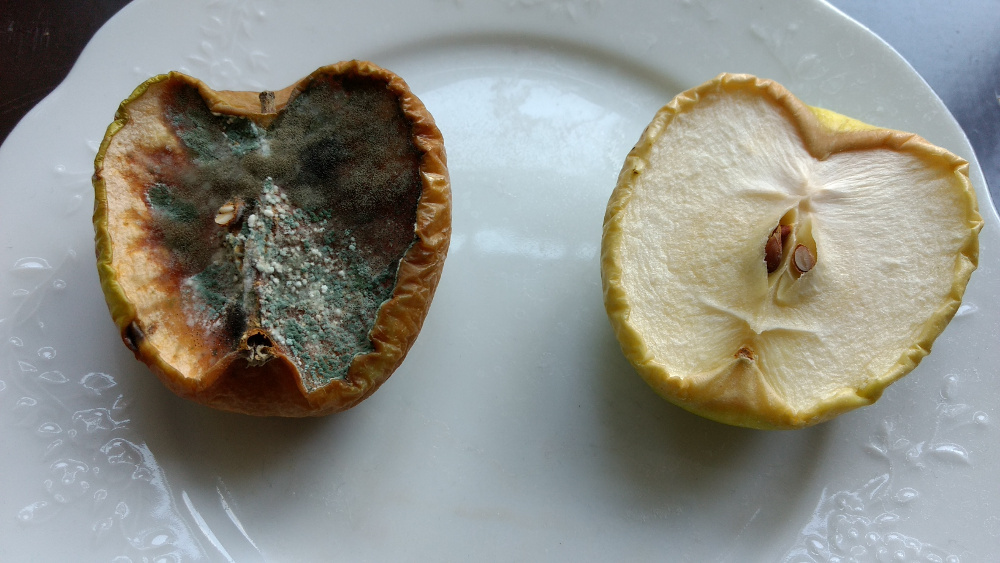 appel-sulfiet-levenindebrouwerij